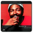 The Marvin Gaye Collection