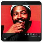 【ハイレゾ音源備忘録】 Marvin Gaye / The Marvine Gaye Collection