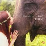 【ハイレゾ音源備忘録】 KOKIA / Where to go my love?