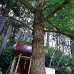 【地元探訪】お沢稲荷(湯沢市古館山)