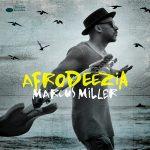【ハイレゾ音源備忘録】Marcus Miller / Afrodeezia