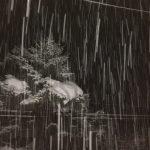 【朗報】雪